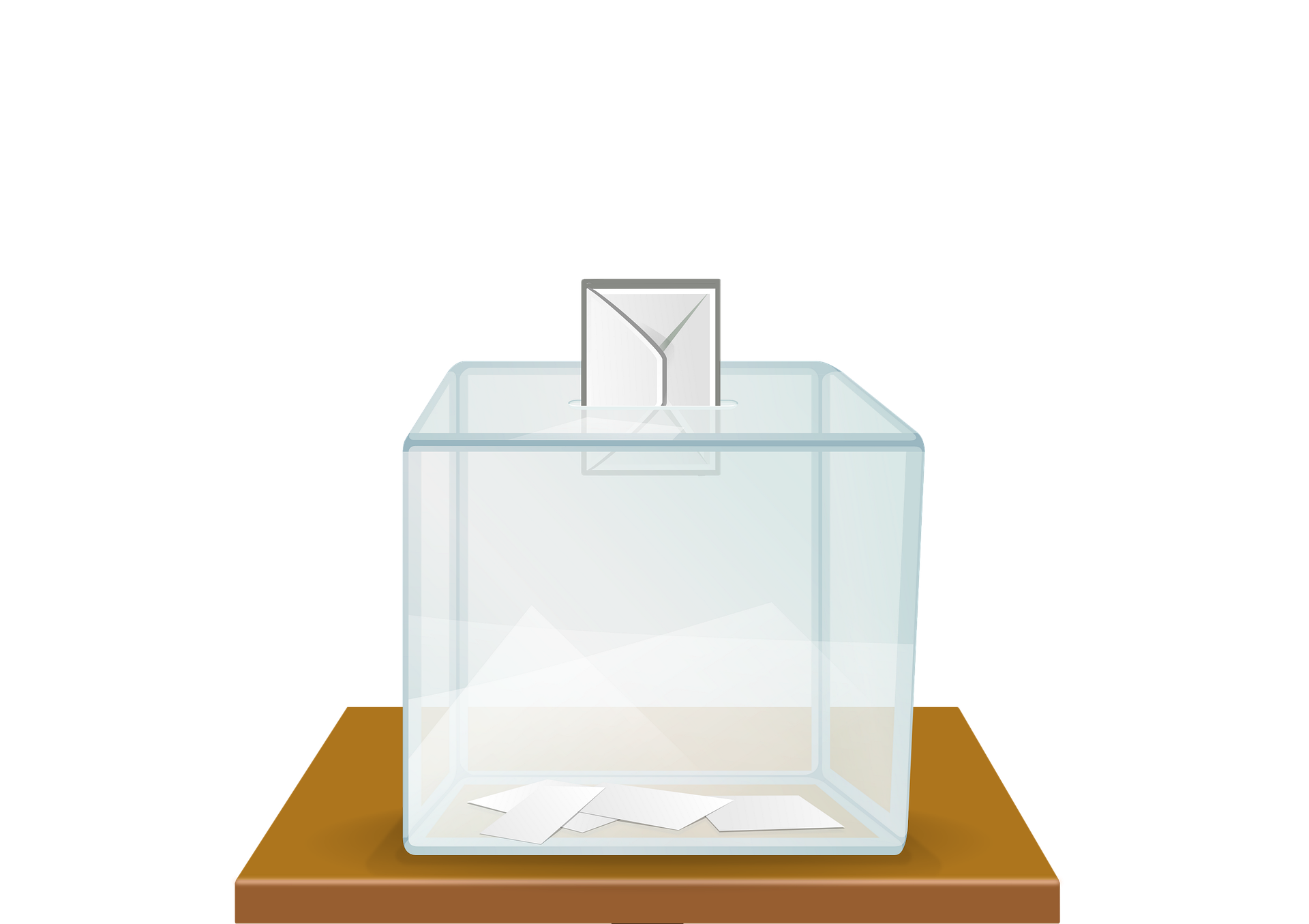 Äänestää. Pixabay.