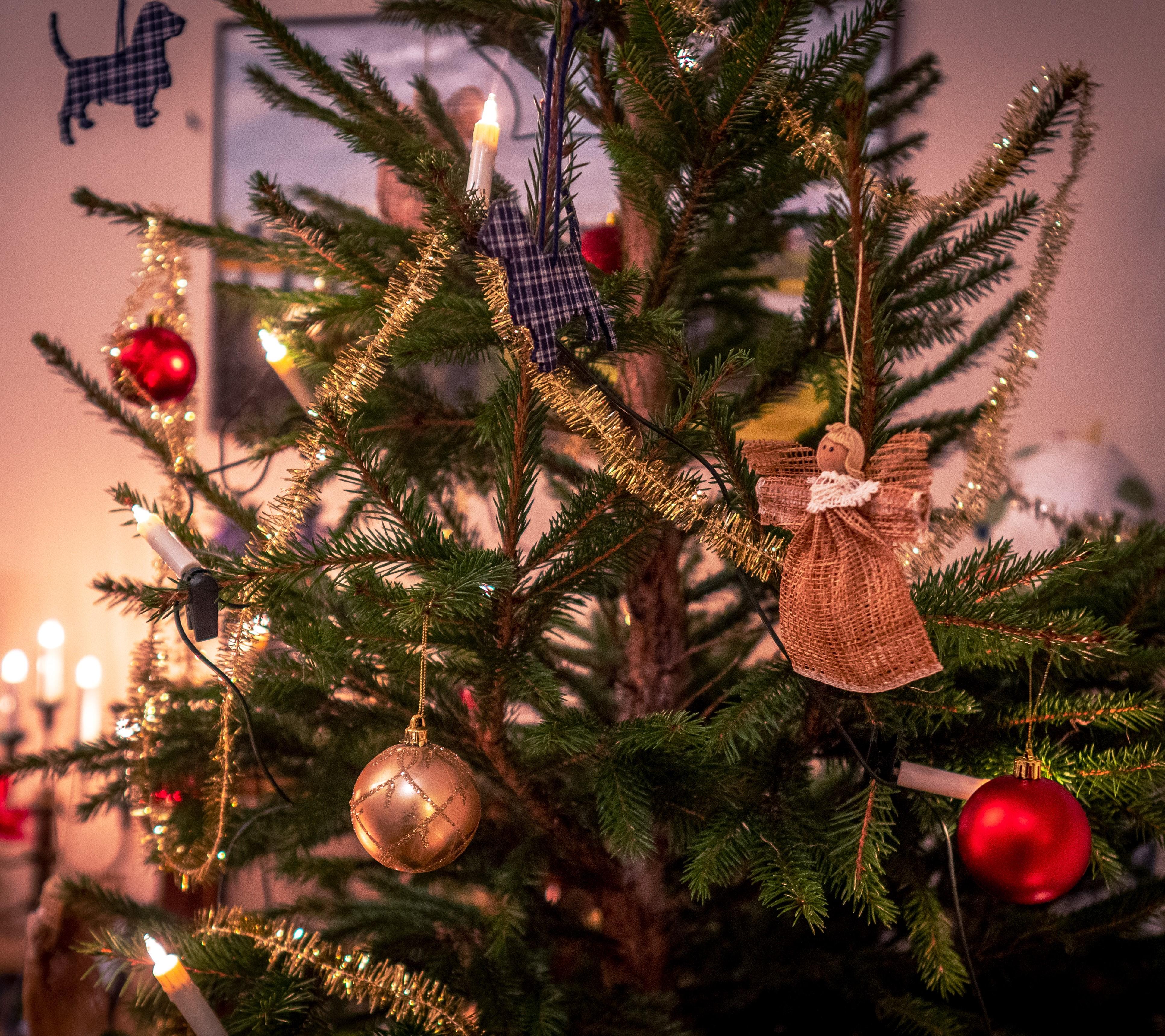 Joulukuusen koristeita. Tuukka Lindholm.