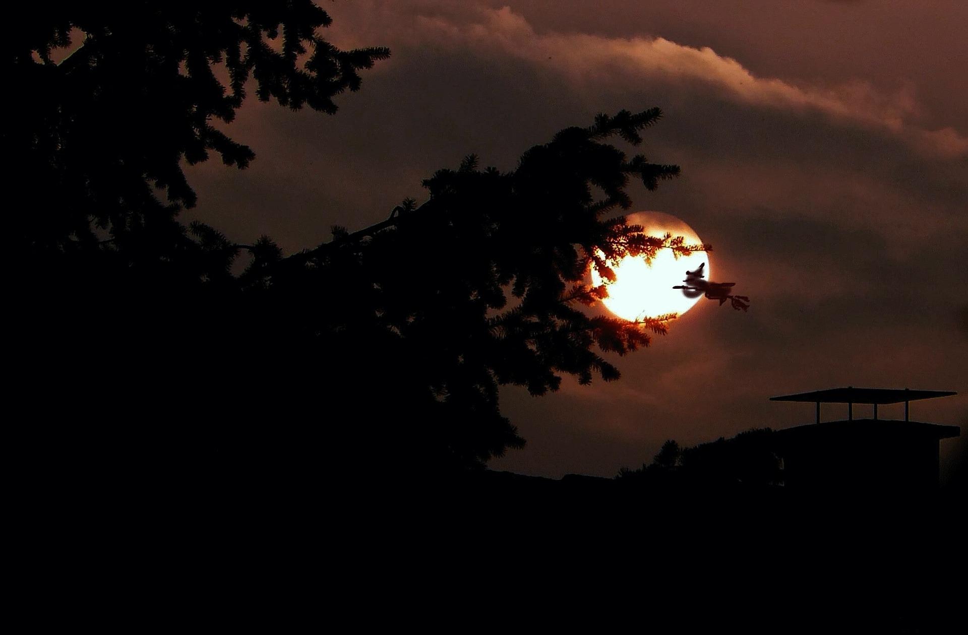 Noita kuutamossa. Pixabay.