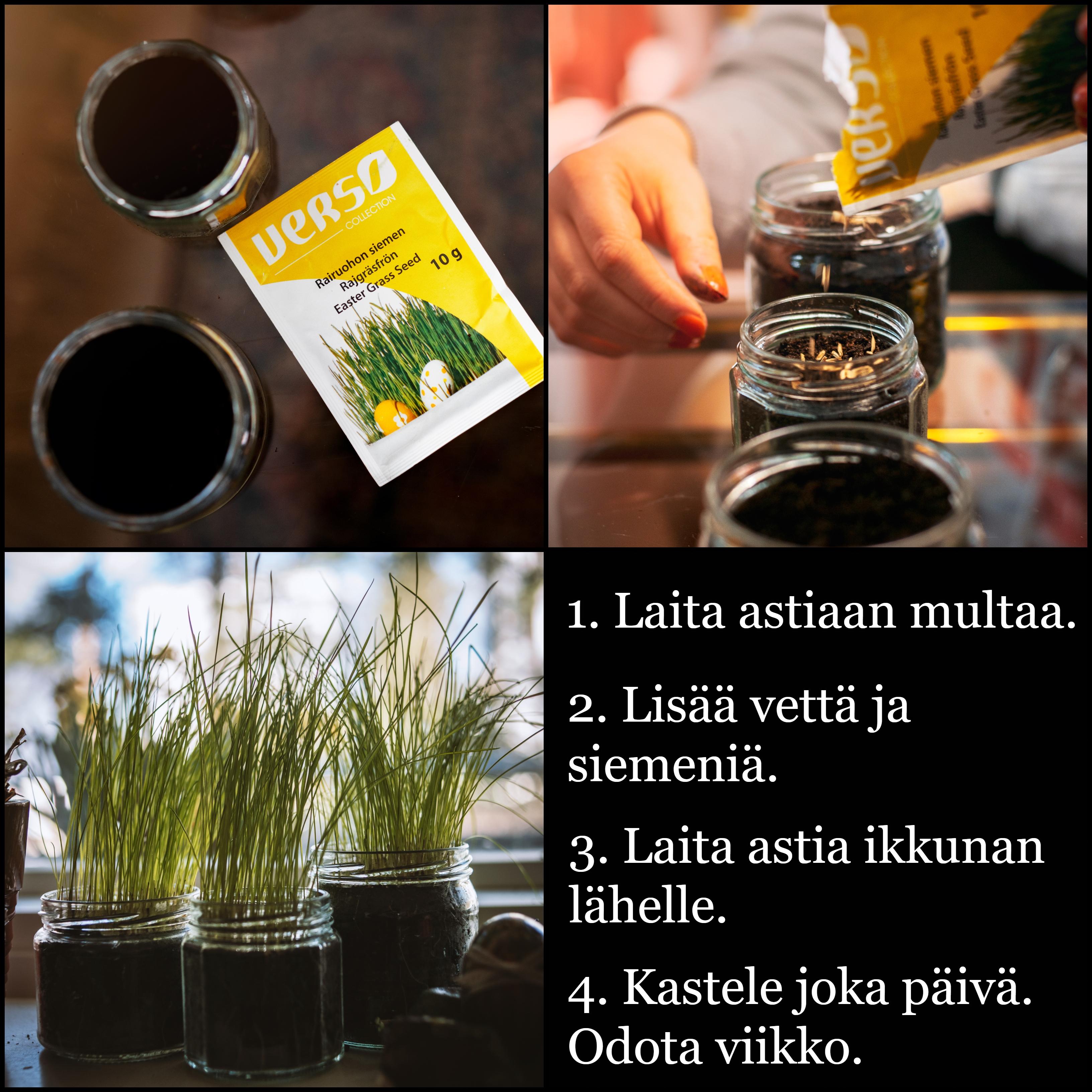 Kuvat: Tuukka Lindholm.
